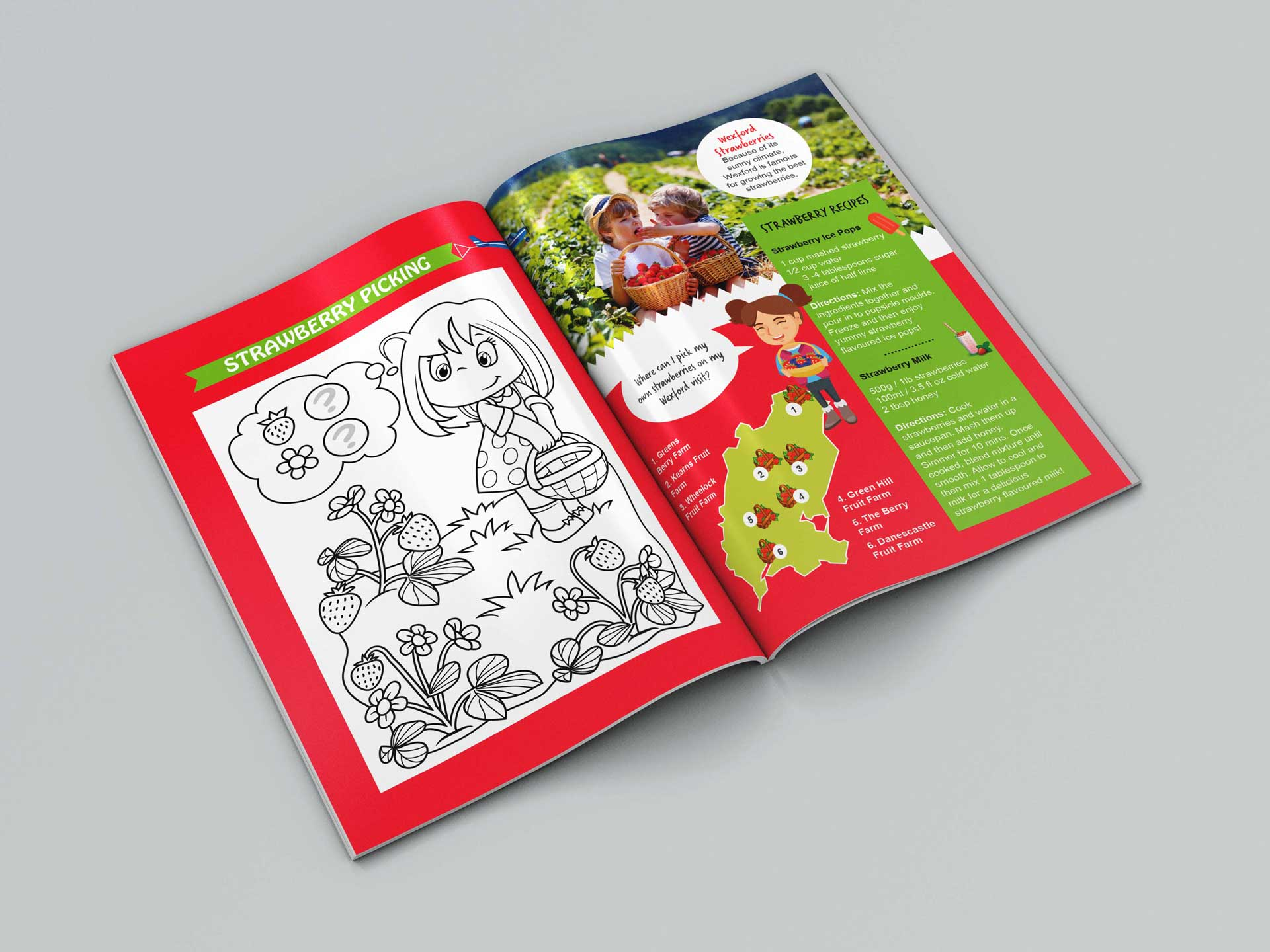 Visit Wexford Kids Book 06